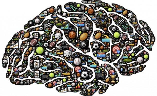 pixabay_com_20151009  brain-954817_640